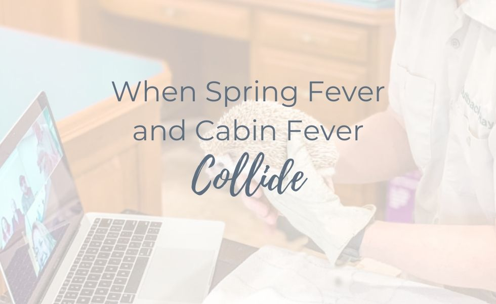 When Spring Fever and Cabin Fever Collide